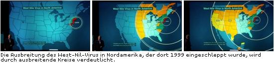 Animation zur Ausbreitung des West-Nil-Virus'