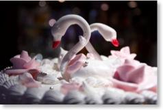 Eine Hochzeitstorte dekoriert mit zwei Schwänen