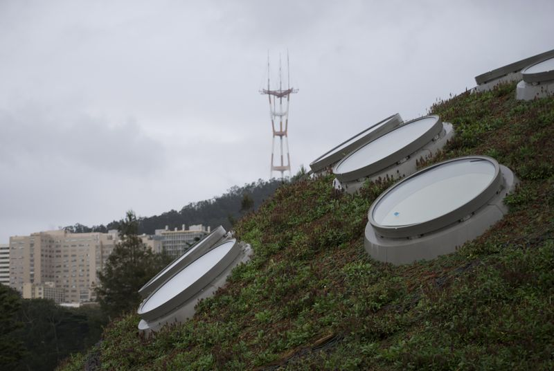 The roof of the San Francisco Academy of Science.