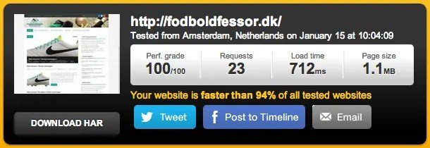 100% score i Pingdom Website Speed Test