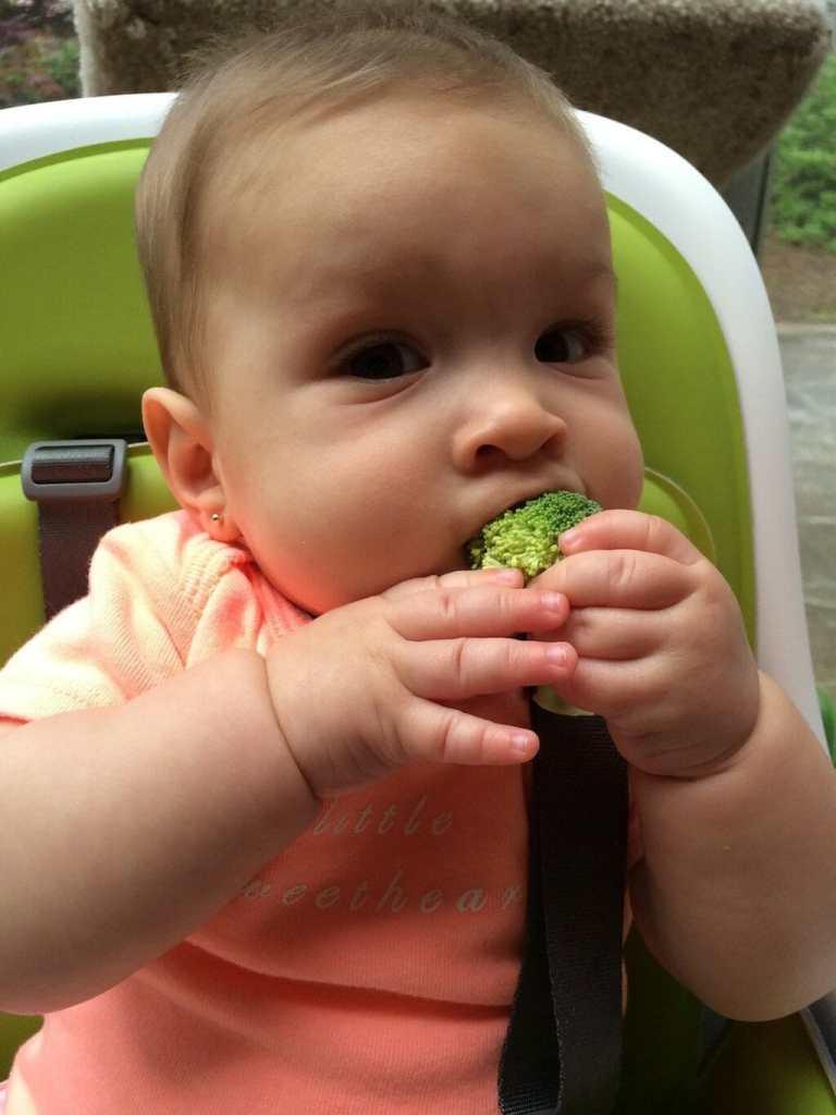 Baby on paleo diet