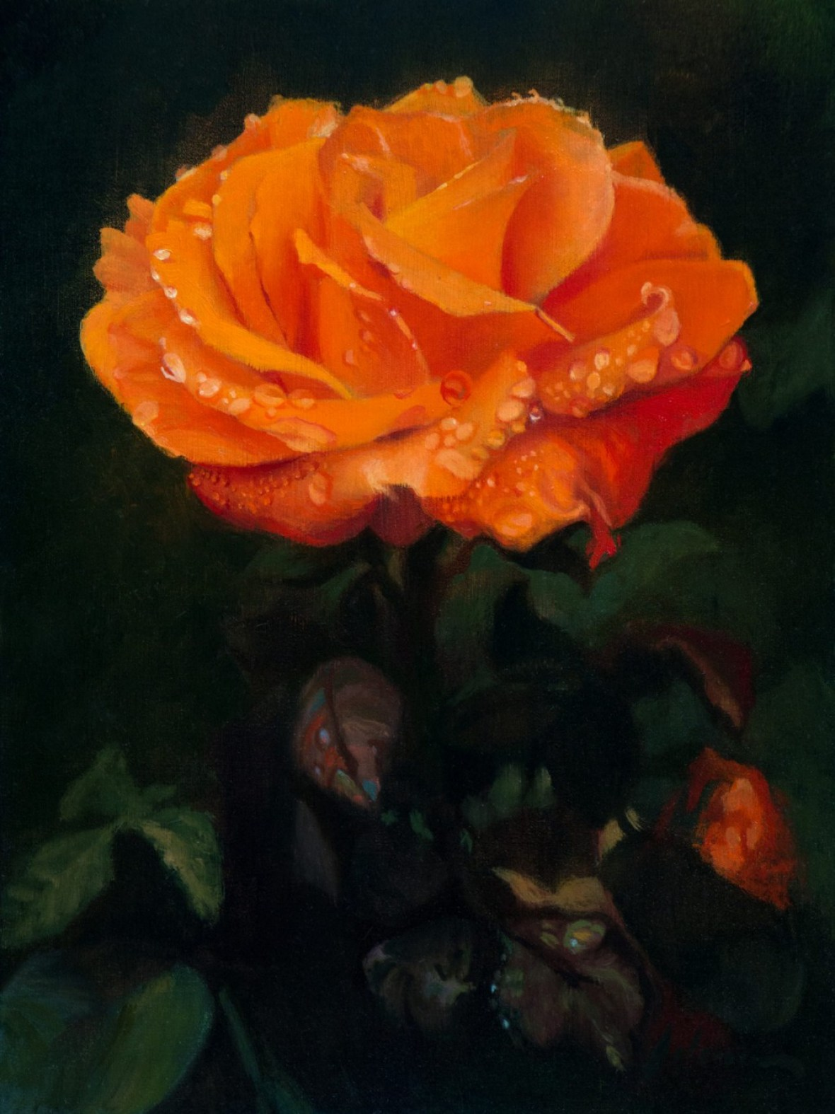 Orange Rose | 9x12 inches | oil on panel