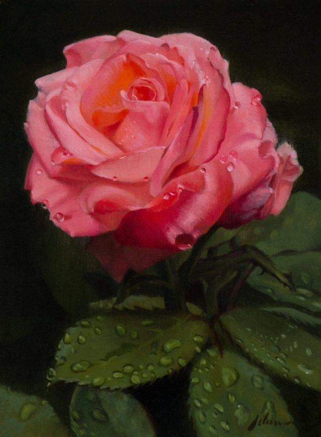 Pink Rose by Michael Lynn Adams