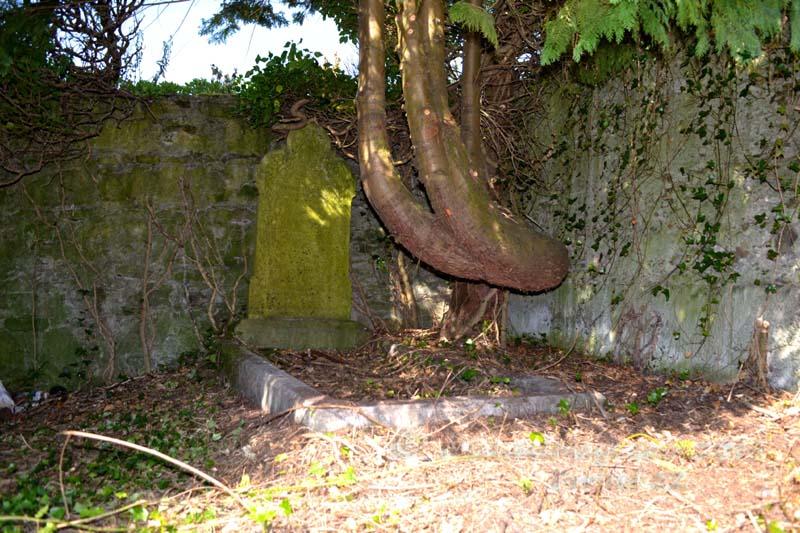 Protestant Graveyard Swinford
