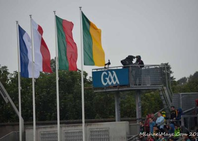 Mayo v Donegal 8th August 2015