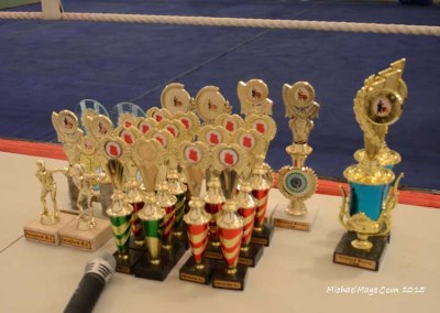 Swinford Boxing Club Tournament 7th November 2015