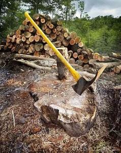 chopping-wood-12575009