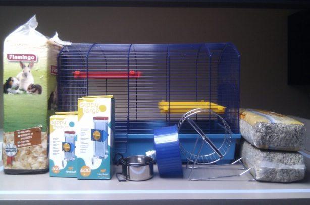 HamsterStarterPack2