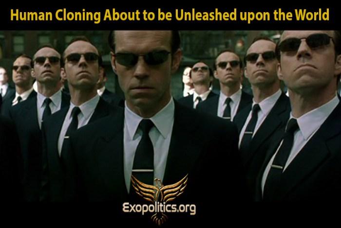 human cloning going mainstream