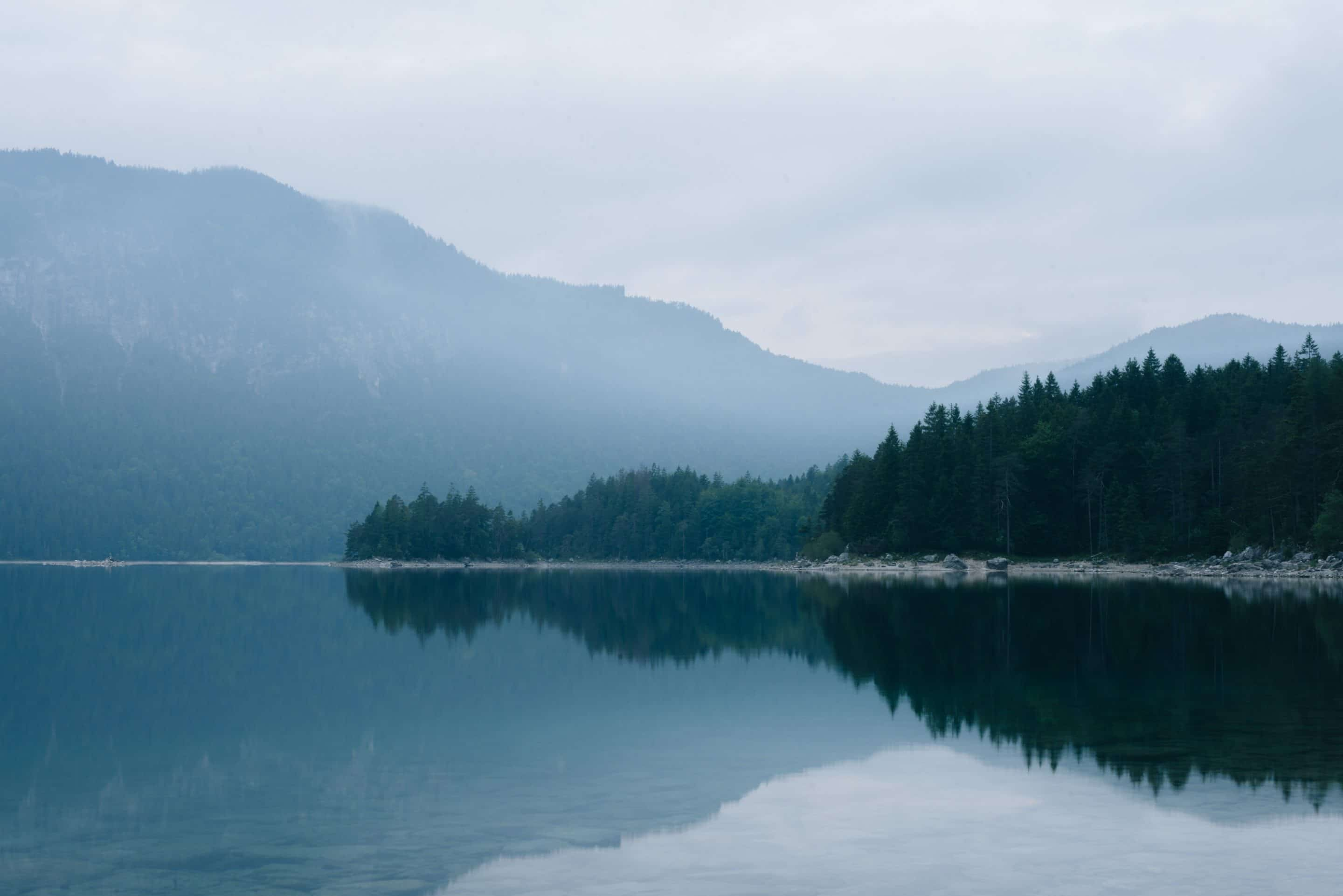 Memories from a moody morning in the forest at the stunning lake Eibsee in southern Germany and its intriguing landscape by photographer Michael Schauer