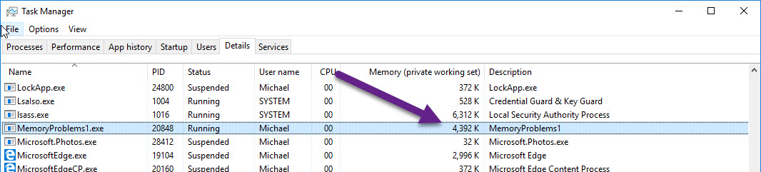 Find, Fix, and Avoid Memory Leaks in C#  NET: 8 Best Practices