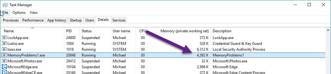 Find, Fix, and Avoid Memory Leaks in C#  NET: 8 Best
