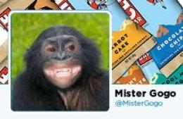 Mister Gogo