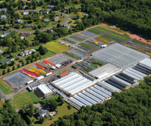 Michael's Greenhouses featured in Greenhouse Management Magazine