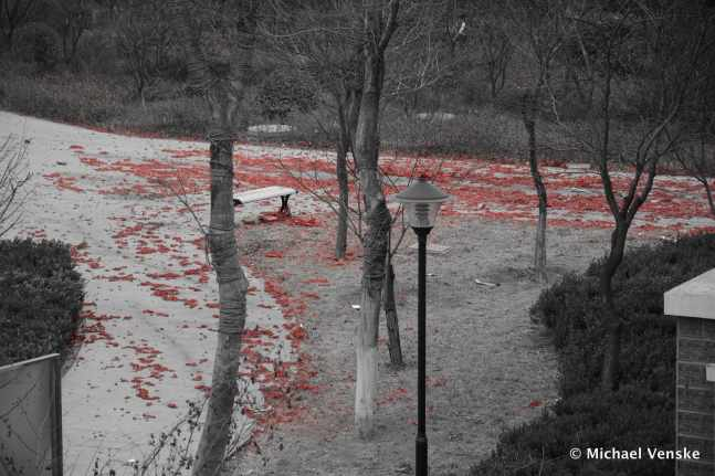 Overlooking the courtyard littered with red paper firecracker casings