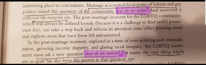 image of selection from Kate D'Adamo's chapter on queer sex work