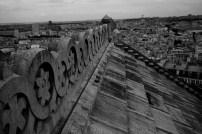 Sacré-Cœur rooftop