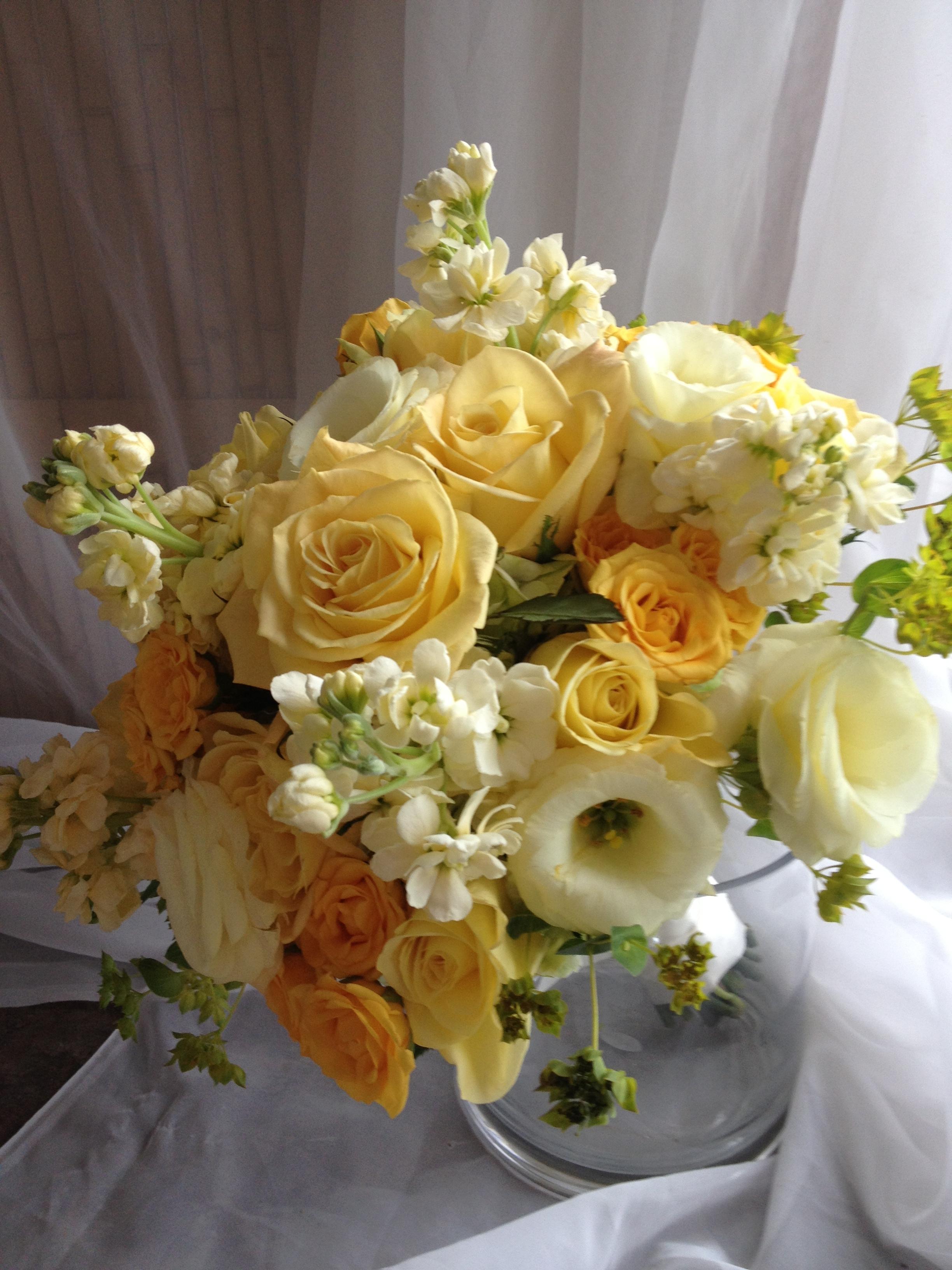 Events Michaleens In Bloom