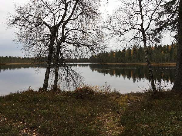 Otoño Laponia