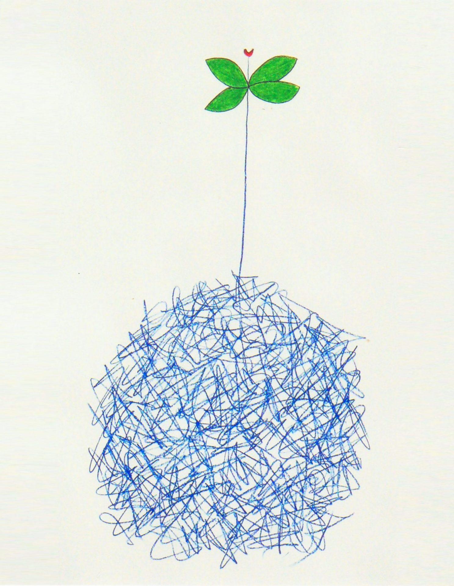 Botanique 17- Crayons de couleur sur papier 50 x 65cm - 2004