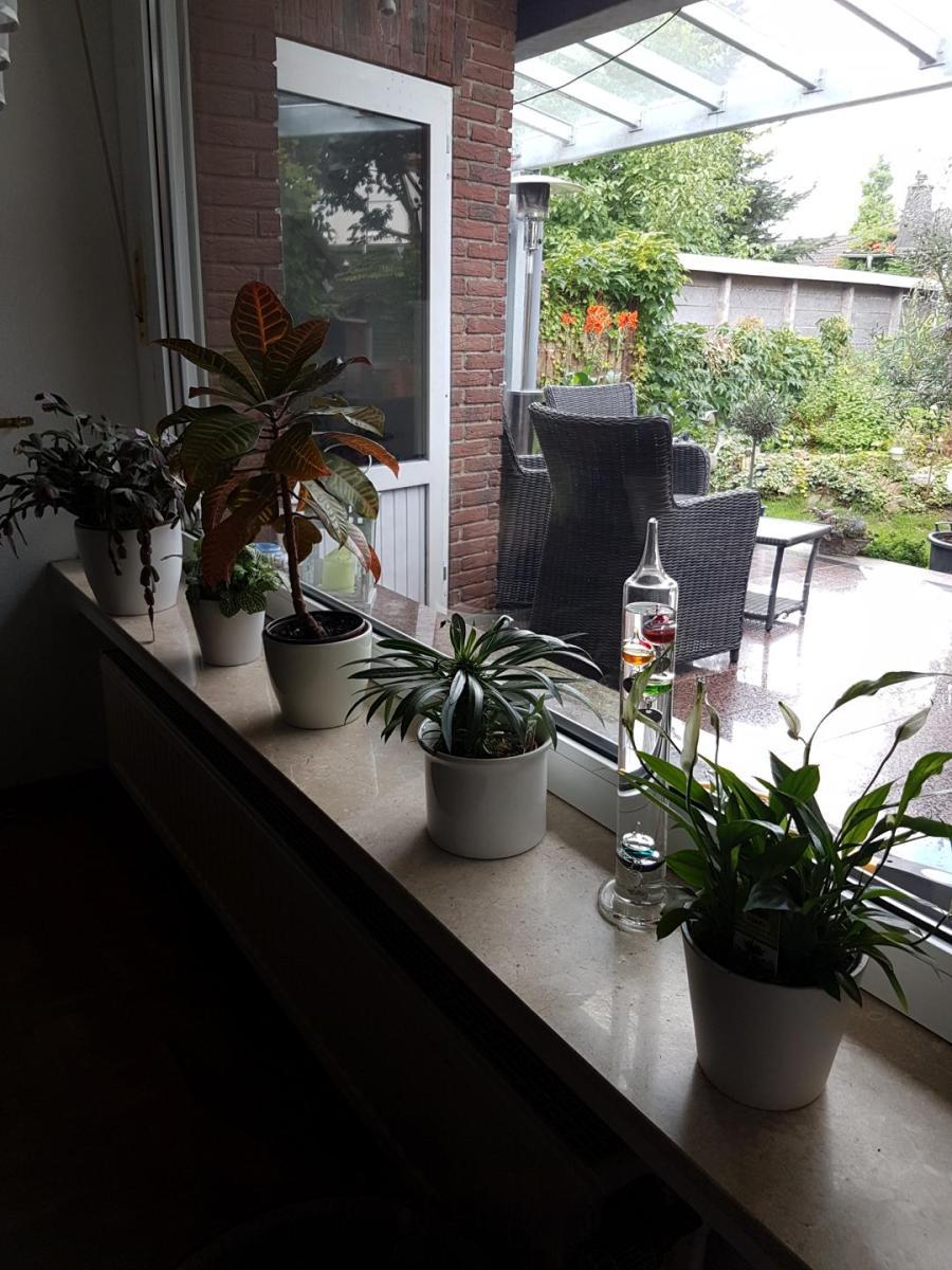 Innen - Fensterbank in Naturstein Daino poliert