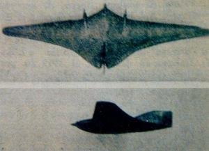 Ce type d'aile volante fut souvent aperçue à l'époque que nous relatons.