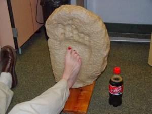 Cette empreinte a été coulé près de Glen Rose Texas à la rivière Paluxy. Il mesure 14 cm de long, 7 de large. Les paléontologues affirment que la copie est d'une femelle. Les coupes transversales sont des études de compression indiquant que cette personne était d'environ 10 pieds de haut et pesant £ 1000. Le pied humain est celui d'une femelle de taille moyenne de 8,5. Le casting est une gracieuseté du mont. Musée Blanco, Crosbyton TX.