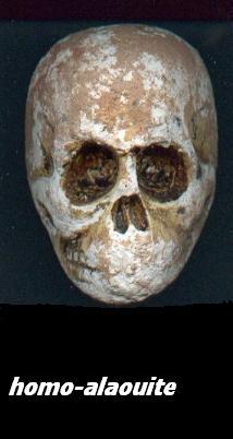fossiles datant inexacte Quand commencer à dater après une relation à long terme
