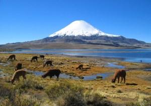 Volcán Parinacuta en Chile nos da un paisaje encantador.