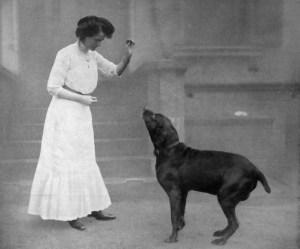 C'est sous le r`gne de Bismark  que le dressage des chiens ,en particulier dans un but militaire,prit son envol.