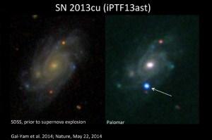 Crédit photo:  Avishay Gal-Yam, Institut Weizmann des sciences. A gauche: image de la galaxie UGC 9739 du Sloan Digital Sky Survey (SDSS). Droite: Une tache bleu vif qui a marqué l'explosion d'une supernova.  Read more at http://www.iflscience.com/space/astronomers-capture-rare-wolf-rayet-star-just-hours-after-it-dramatically-explodes