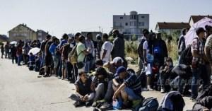 des-migrants-viennent-ici-de-franchir-la-frontiere-entre-la-macedoine-et-la-serbie-en-route-vers-l-europe-du-nord-afp