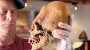 Les détails  sont très visibles :ik est clair que ce ne sont pas des crânes humains.