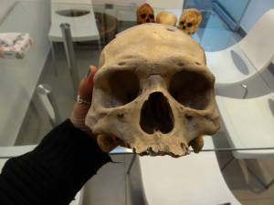 On dirait un homme de néandertal ...géant!