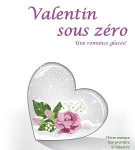 Valentin sous zéro -Une romance courte et savoureuse!