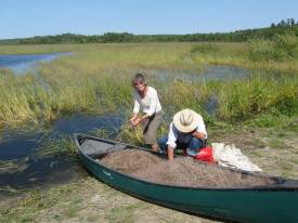 Cleaning wild rice