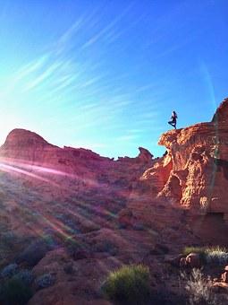 Sunny Tree Pose on Rocks