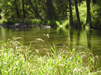 Oak Creek  Photo by Michele Venne