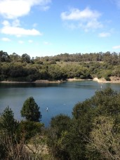View of Lake Chabot from the trail.