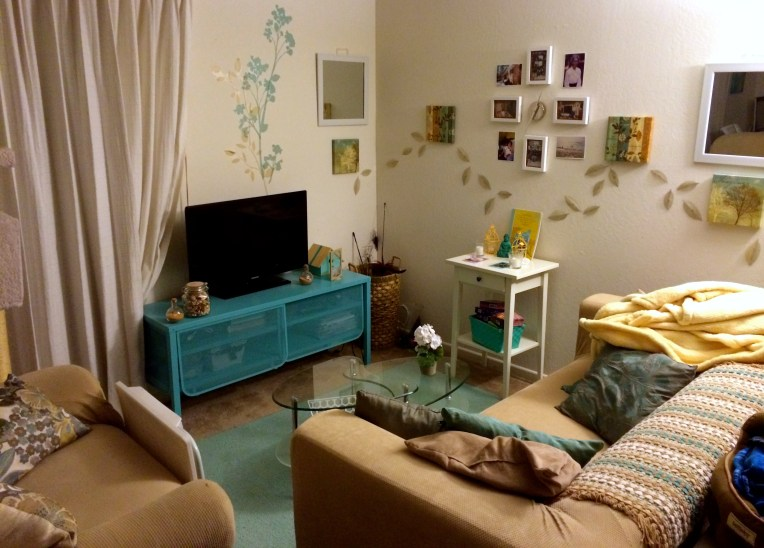 The living room area of my studio apartment.