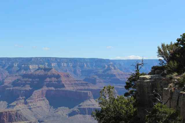 At the edge of the Grand Canyon