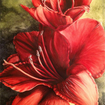 Alive_Red Amaryllis watercolor painting Michelle EAST