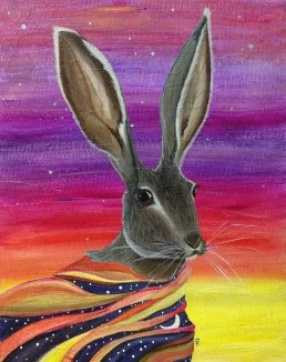 """Night Rabbit"""