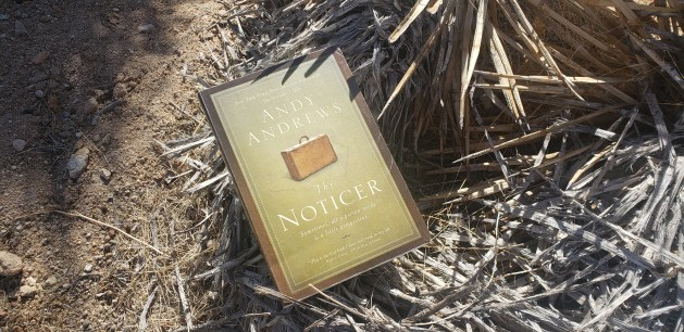 The Noticer book cover on a desert background.