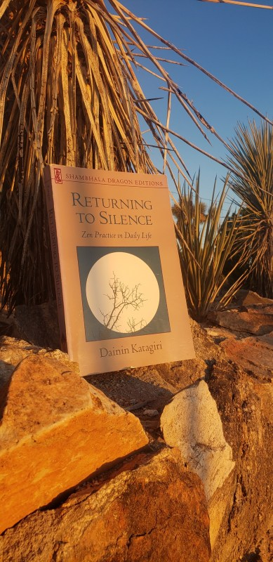 Returning to Silence book cover on a desert background.