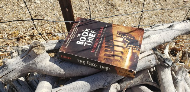 The Book Thief by Markus Zusak book cover on a woodpile.