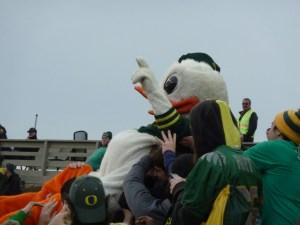 "Puddles says ""Go Ducks!"""