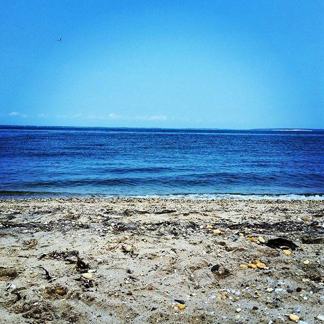 Peconic Bay #longisland #hamptonbays #beach #relax