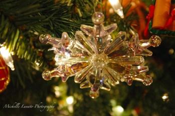 CHRISTMAS019 copy