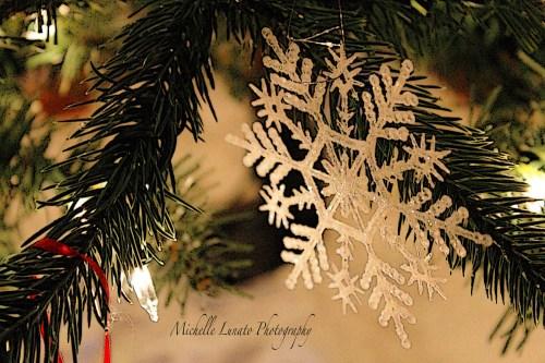 CHRISTMAS021 copy